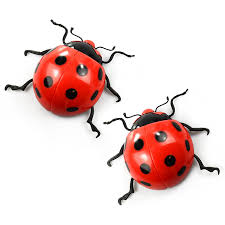Garden Wall Decoration by Extra Large Ladybird Garden Wall Decorations 2 Pack Ladybugs