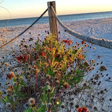 Lighthouse For The Blind Palm Beach 1502 Best Sanibel Island My Love Images On Pinterest Captiva