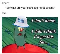 Ucla Memes - the princeton review ranks the top 10 memes for chill teens fun