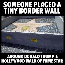 Star Memes - best funny quotes funny donald trump memes and viral images