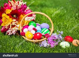 easter basket grass easter basket grass stock photo 259442765