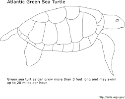 green coloring page sofia kid u0027s page coloring pages green sea turtle