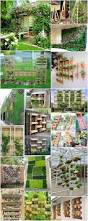 20 excellent diy vertical garden ideas for your home recycled things