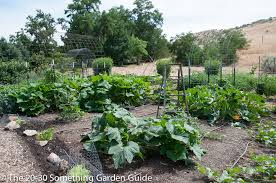 nice pretty vegetable gardens beautiful vegetable garden at the