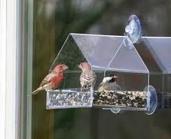 Jewel Box Window Hummingbird Feeder Window Bird Feeders