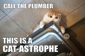 Plumbing Meme - plumbing experts dgpexperts twitter