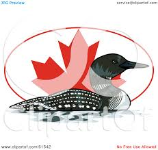royalty free rf clipart illustration of a swimming loon in front