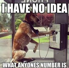Phone Meme - dog on the phone funny meme bajiroo com
