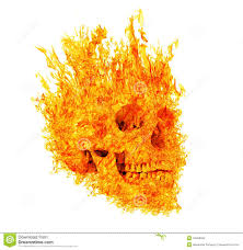 pumpkin no background skull in flame on white background stock photography image 34493552
