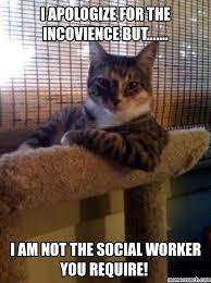 Social Worker Meme - worker