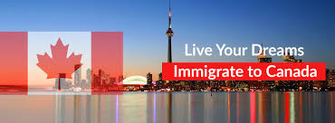 bureau immigration canada immigration lawyer toronto immigration office of ronen kurzfeld