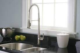 Danze Pull Down Kitchen Faucet by Premier Faucet Essen One Handle Single Hole Pull Down Bar Faucet