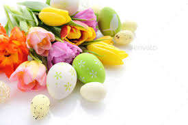 tulips flowers easter eggs with tulips flowers on white background stock photo by