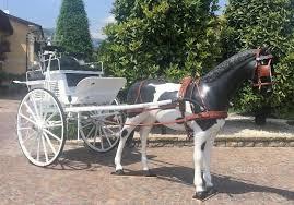 carrozze in vendita carrozza per cavallo gig tandem cart animali in vendita a brescia