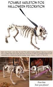Dog Skeleton Halloween Decoration by Top Ten Outdoor Halloween Decorations