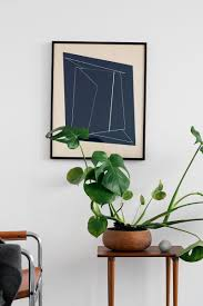 easy houseplants indoor trees philodendron leaf