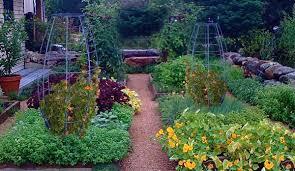 Vertical Garden Trellis - oh grow up the magnificent benefits of vertical gardens