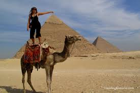 camel surfing at the great pyramids in egypt