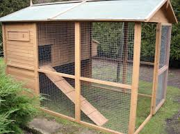 outdoor rabbit run with hutch for walter and his chicken friends