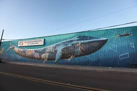 pangeaseed sea walls murals for oceans san diego 2016 christopher konecki finals by carly ealey 7012
