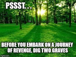 Grass Memes - unique grass memes kayak wallpaper