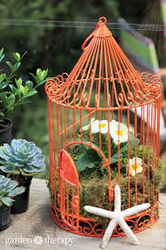 How To Decorate A Birdcage Home Decor 100 How To Decorate A Birdcage Home Decor Online Buy