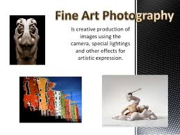 Types Of Photography Basic Photography Types And Element