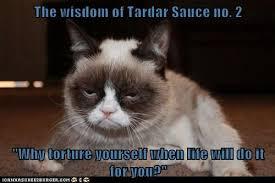 Tardar Sauce Meme - the wisdom of tardar sauce no 2 why torture yourself when life