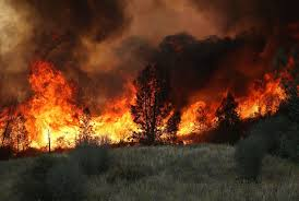 Wildfire Anderson Ca by Can You Get High From Burning Weed Farms The California Wildfires