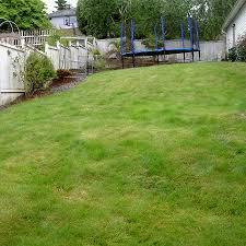 Rock Garden Bellevue by Reynolds Landscape U2013 The Intelligent Use Of Nature