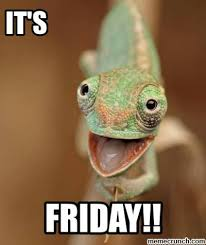 Lizard Meme - friday lizard