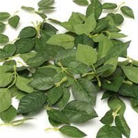 wholesale leaf garlands in bulk from best leaf garlands