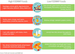 low fodmap diet the d i y beginner u0027s guide