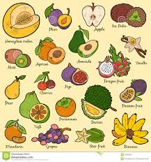 cartoon fruits stickers royalty free stock photography image
