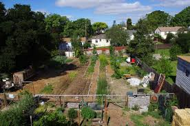 astounding backyard farming wli inc