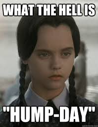 What The Hell Is A Meme - what the hell is hump day wednesday addams quickmeme