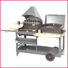 cuisiner avec barbecue a gaz castorama plancha 111839 cuisine barbecue et au charbon de avec gaz