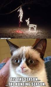 Cat Christmas Memes - grumpy cat christmas funny christmas lights what makes grumpy cat
