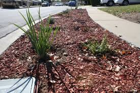 parkway turf replacement rebate program cucamonga valley water