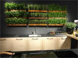 Kitchen Herb Garden Design 54 Best Indoor Herb Gardens Images On Pinterest Plants Kitchen