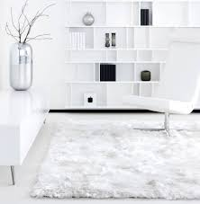 home decorators rugs clubdeases com