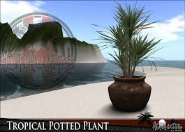 Tropical Potted Plants Outdoor - second life marketplace headhunter u0027s island tropical potted