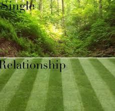 Single Relationship Memes - single relationship memes and comics