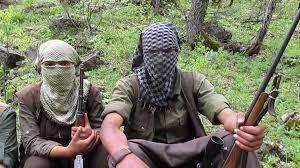 guerrillas midst miscellaneous groups turkey