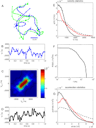 neural coding of natural stimuli information at sub millisecond