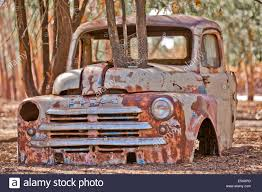 Vintage Ford Truck Grill - front grill and hood for an old rusty chevy truck stock photo