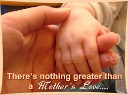 Cute Lovely Quotes by Lovely Cute Parents Love Quotes Daily Quotes Of The Life