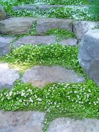 32 natural and creative stone garden path ideas gardenoholic