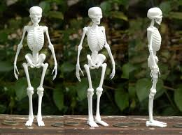poseable skeleton free standing skeleton figure 5hn65ljfq by mattbag