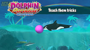 dolphin apk dolphin paradise friends for android free at apk